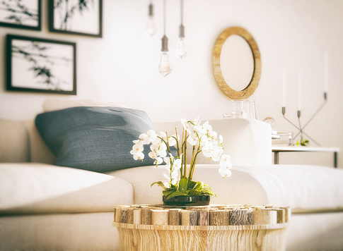 White Orchid in living room