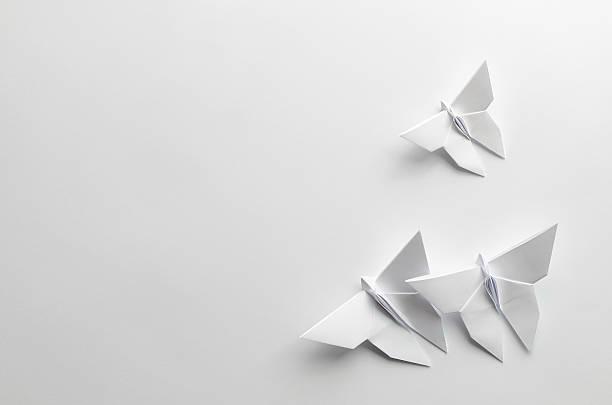 blanc origami des papillons sur fond blanc - origami photos et images de collection