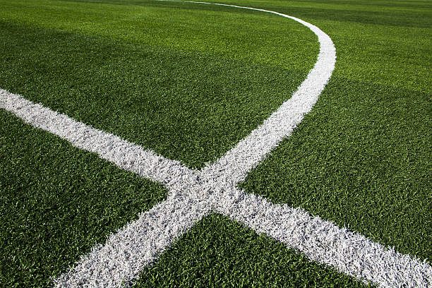 White paint dividers in grass of soccer field stock photo