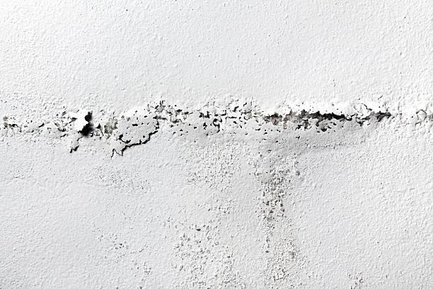 white painted damp wall background - farbe gegen schimmel stock-fotos und bilder