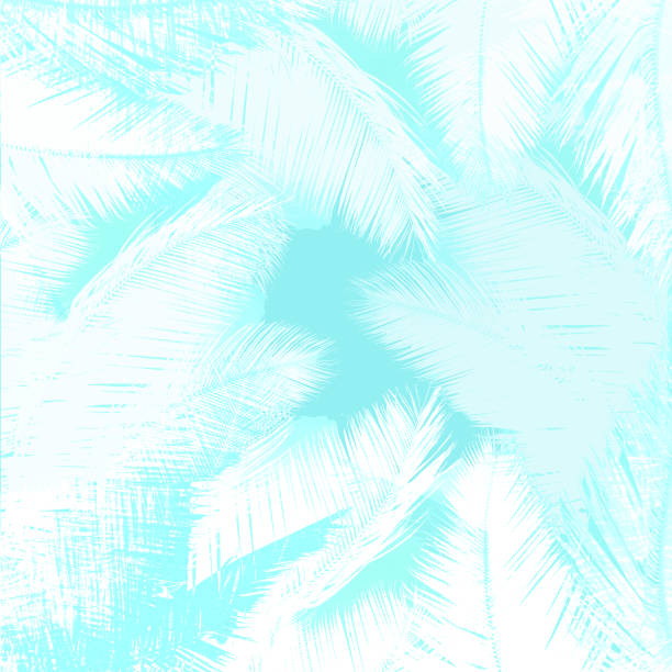 White Palm trees leaves abstract background stock photo
