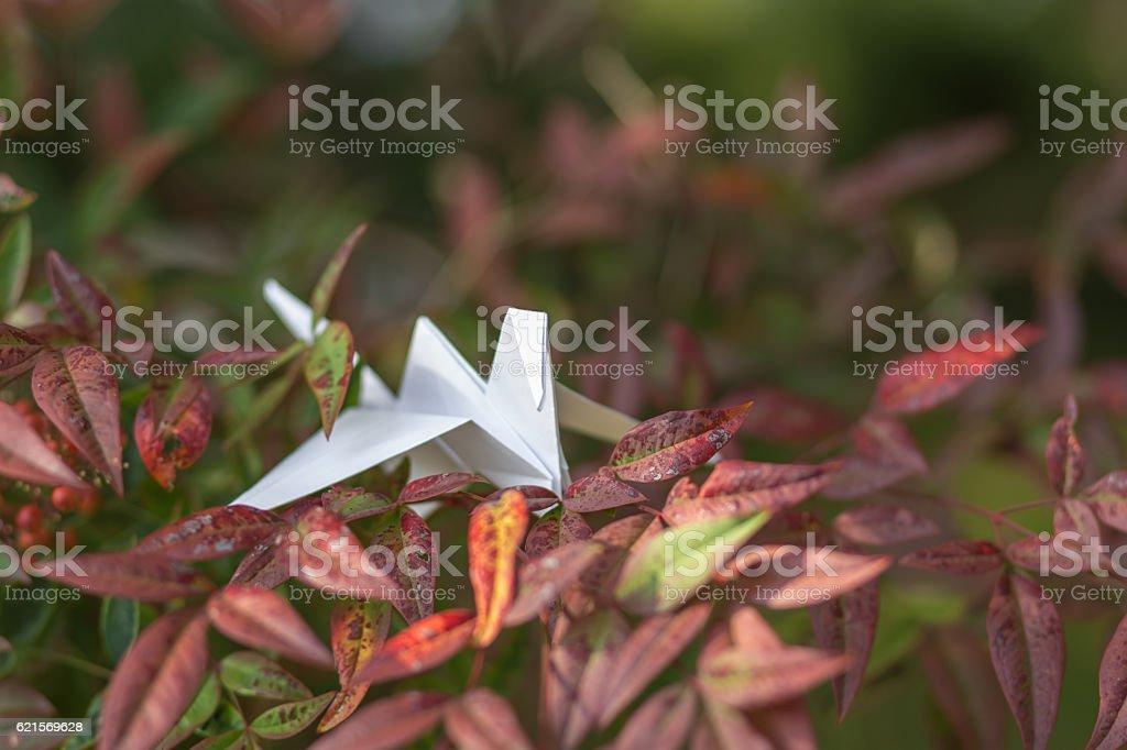 White paper crane on the tree photo libre de droits