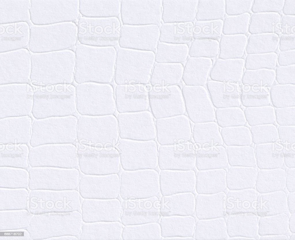 White paper with embossed leather texture background stock photo