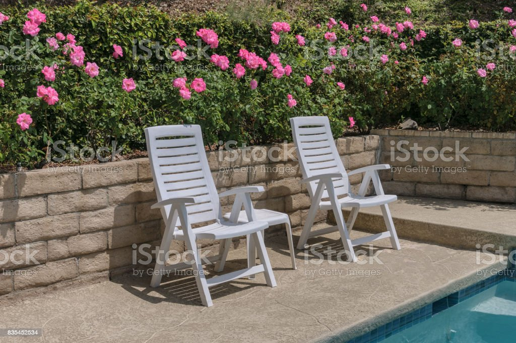 White Patio Chairs Next To Swimming Pool And Rose Bushes Royalty Free Stock  Photo
