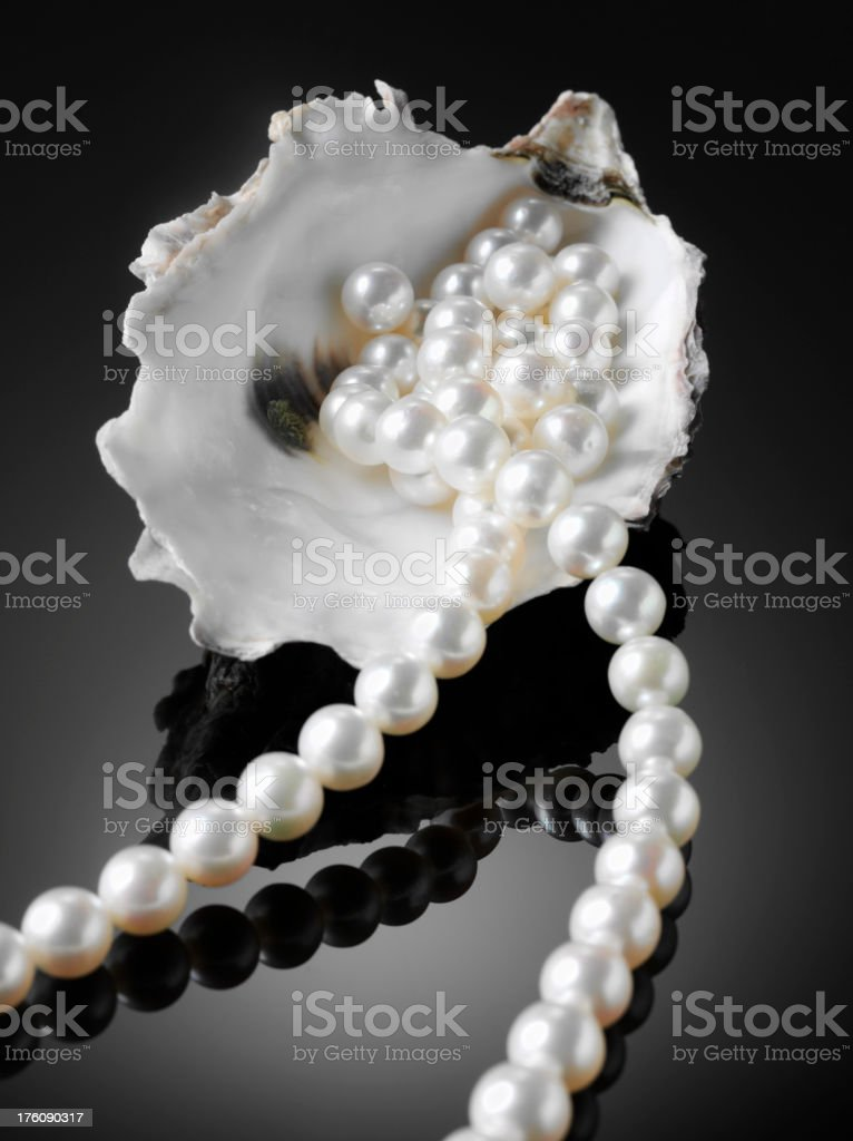 White Pearl Necklace and Oyster Shell royalty-free stock photo