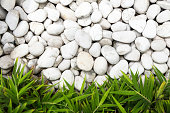 White pebble stones as viewed from above with green bamboo leaves at the bottom of the frame. The image is ideal as a background with plenty of copy space. Selective focus used with sharp focus on the stones and minor blur on the foliage. Shot on Canon EOS full frame system.