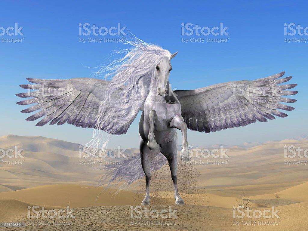 White Pegasus in Desert stock photo