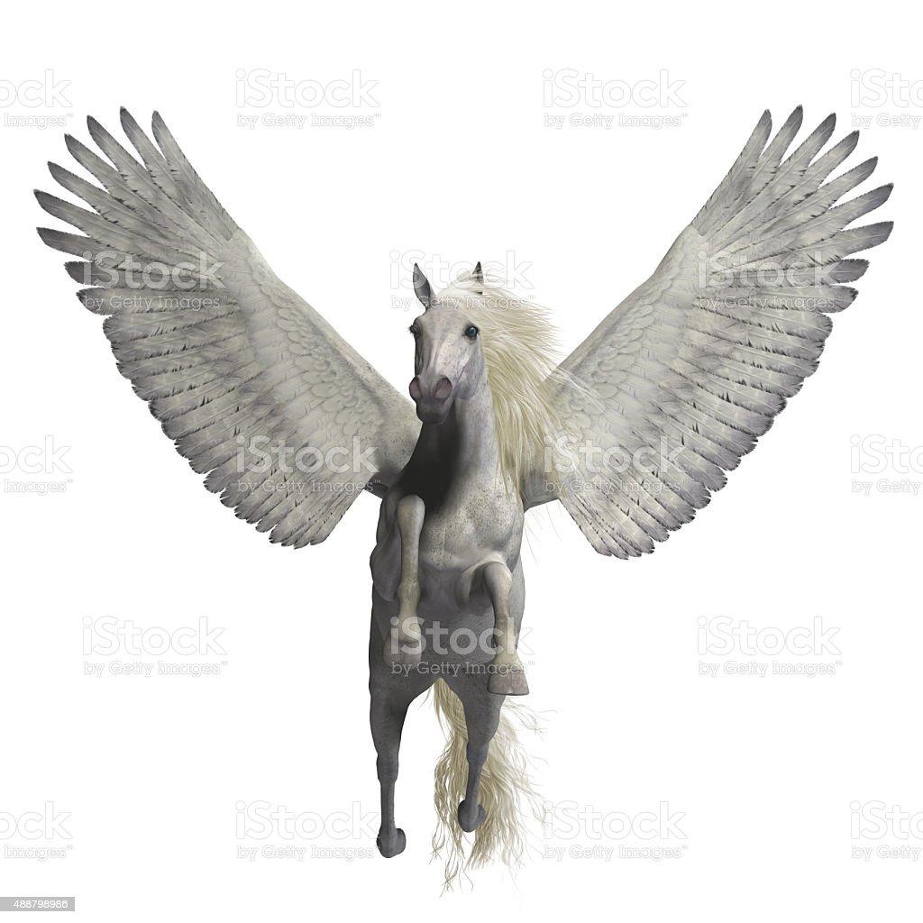 White Pegasus on White stock photo