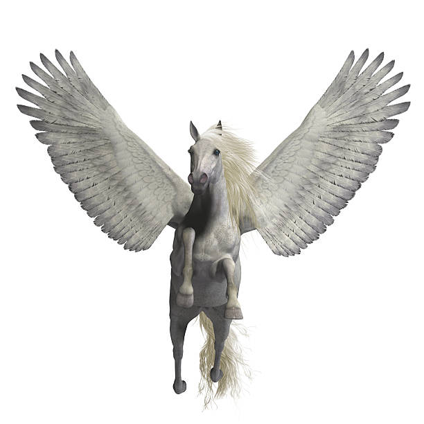 White Pegasus on White stock photo