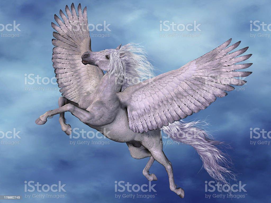 White Pegasus stock photo