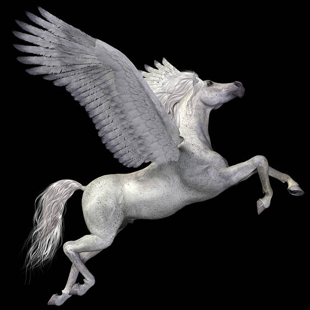White Pegasus Profile stock photo