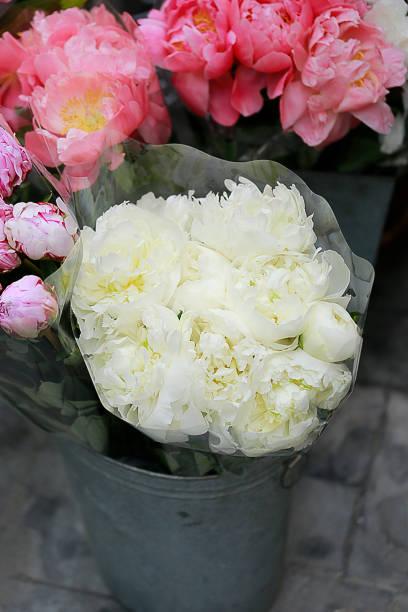 weiße pfingstrose bouquet - zinn hochzeit stock-fotos und bilder