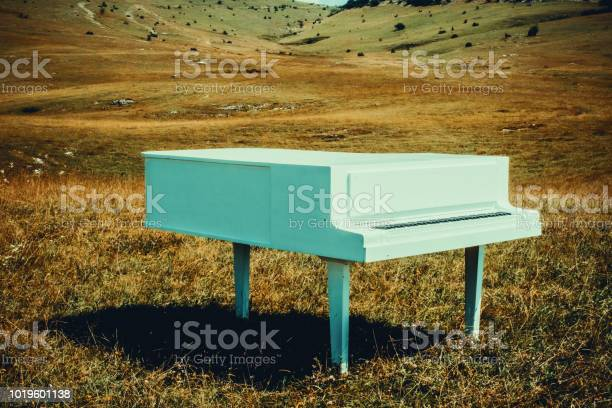 white piano on the meadow