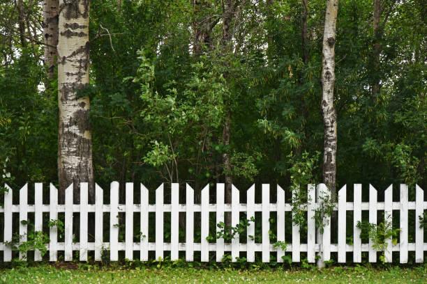 weißen lattenzaun und bäume - lattenzaun garten stock-fotos und bilder