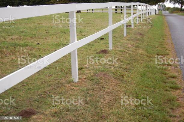 Photo of A white picket fence around a paddock next to a country road and a parallel row of molehills.