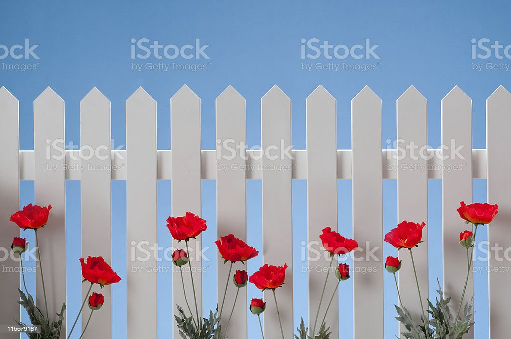 White Picket Fence With Flowers stock photo