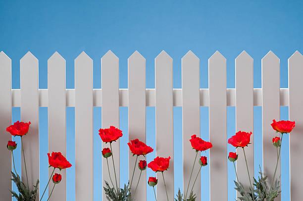 white gartenzaun mit blumen - lattenzaun garten stock-fotos und bilder