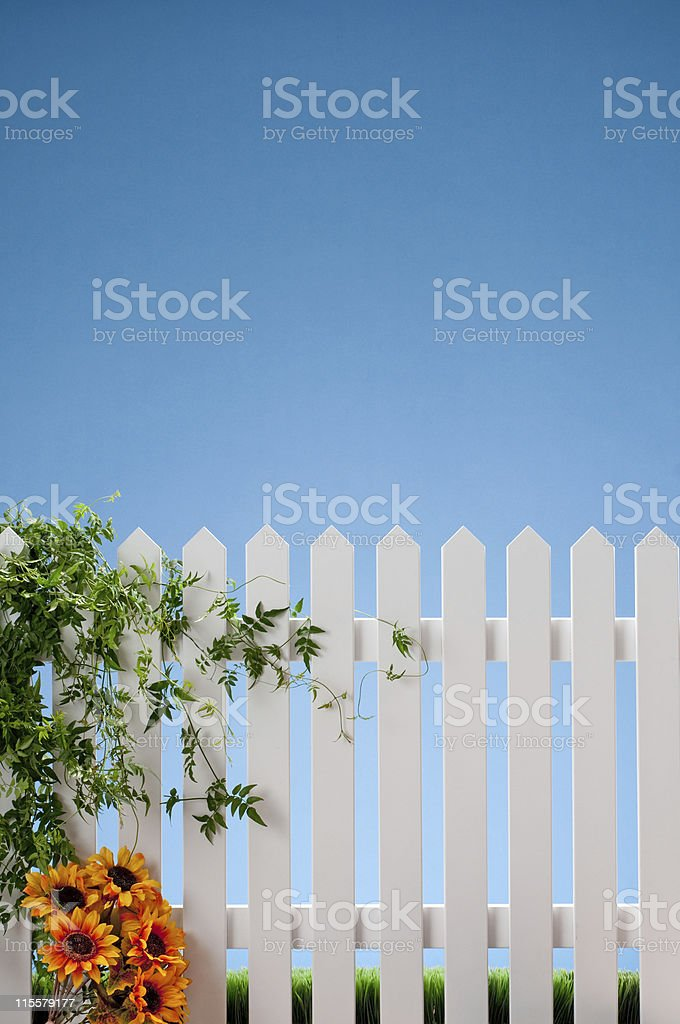 White Picket Fence With Vines And Flowers stock photo