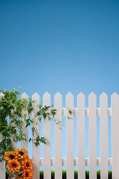 white gartenzaun mit reben und blumen - lattenzaun garten stock-fotos und bilder
