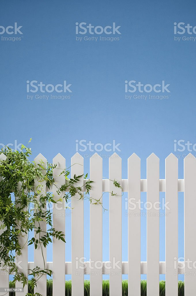 White Picket Fence With Vines royalty-free stock photo