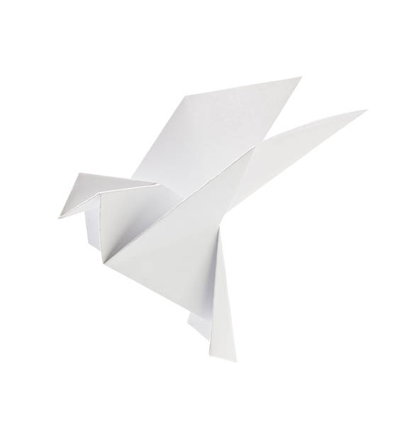 white pigeon of origami - origami photos et images de collection