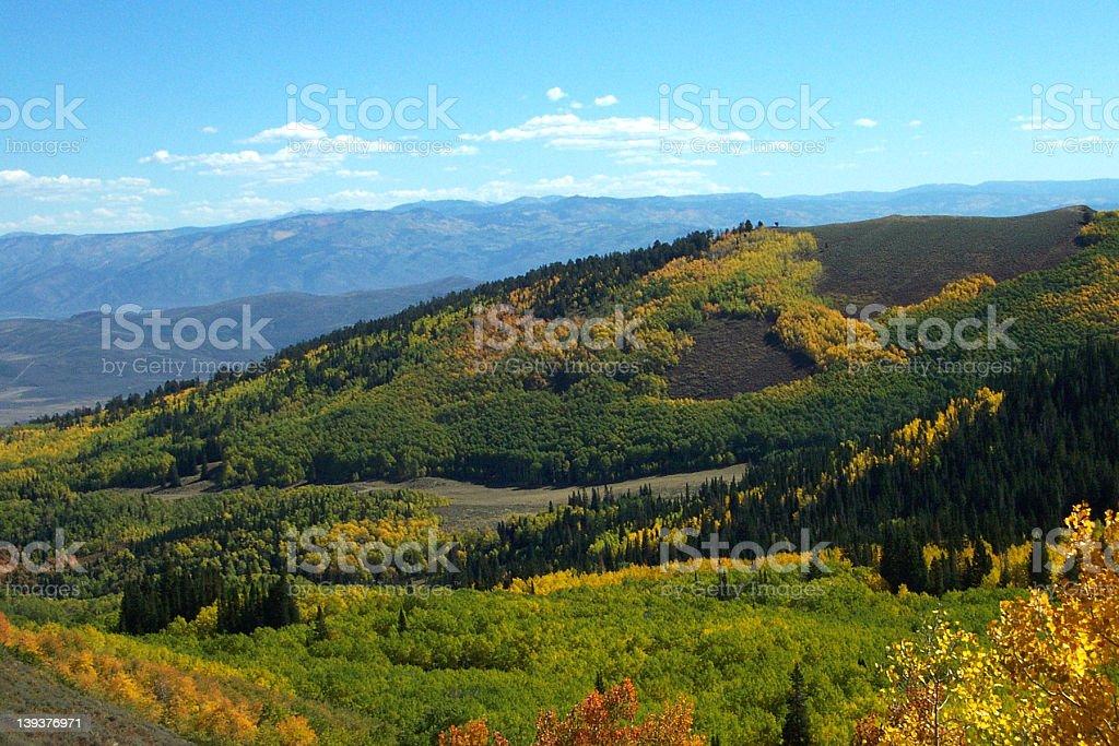 White Pine Canyon Utah in fall stock photo