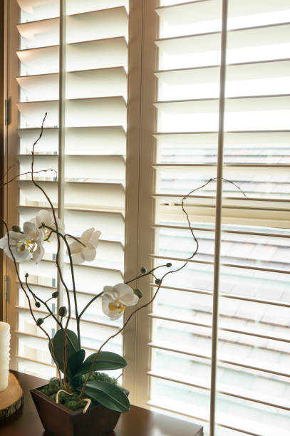 White plantation style wood Shutters stock photo