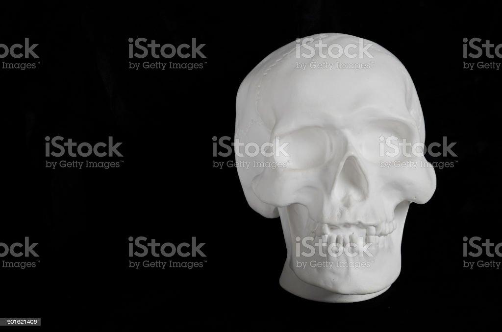 white plaster human skull on a black background stock photo
