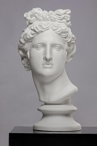 White plaster statue of a bust of Apollo Belvedere