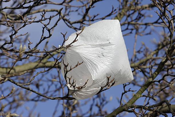 plastiktüte umweltproblem blowing in wind - windbeutel stock-fotos und bilder