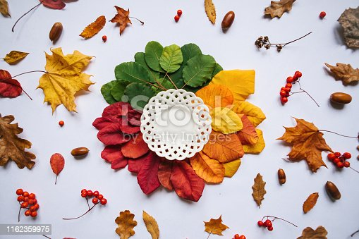 istock White plate on colorful leaves 1162359975