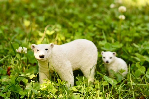 White Polar Bears Toys in Grass.