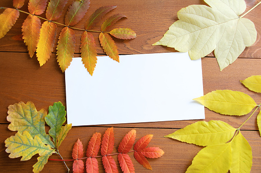 istock White postcard and autumn foliage. Wooden brown background. 1158390337