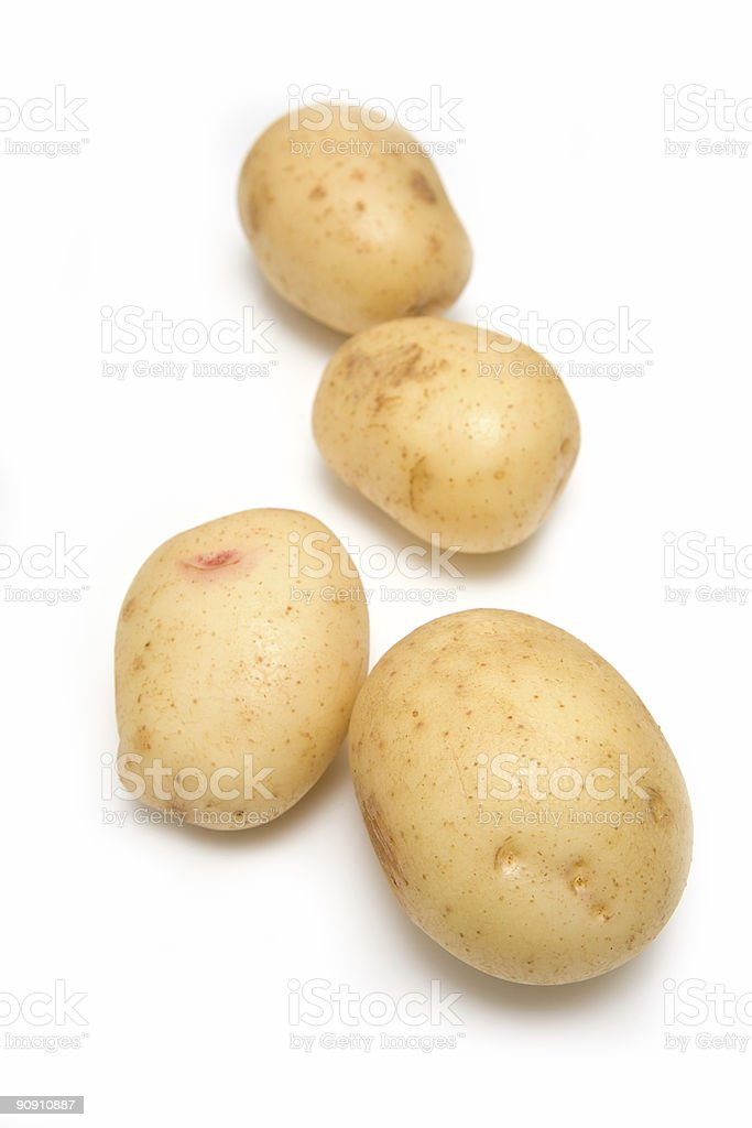 White potatoes on a studio background. stock photo