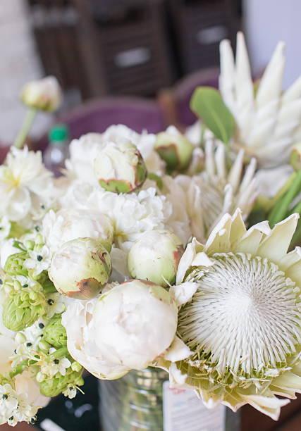 white protea and david austin roses - protea strauß stock-fotos und bilder
