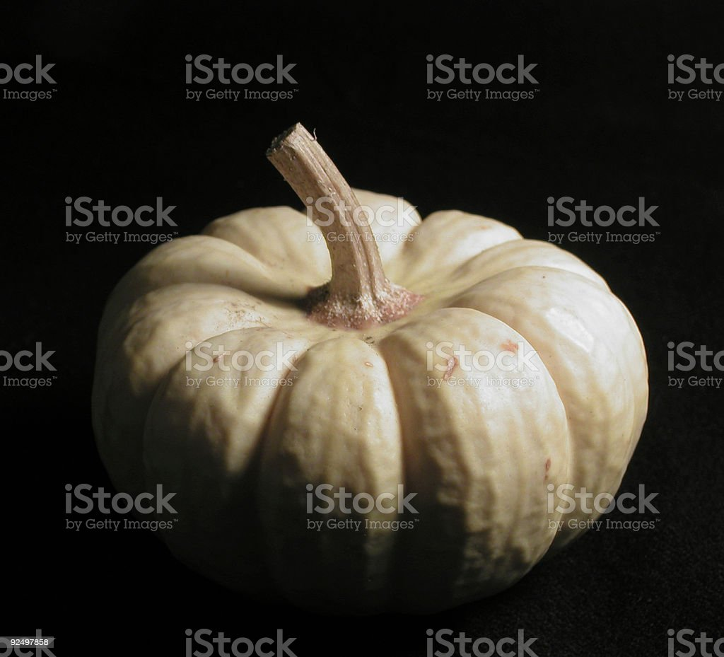 White Pumpkin on Black royalty-free stock photo