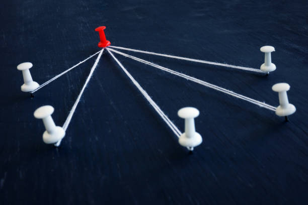 흰색 누름 핀 및 빨간색 하나는 스레드로 연결 됩니다. 리더십, 관리 및 위임. - 책임 뉴스 사진 이미지