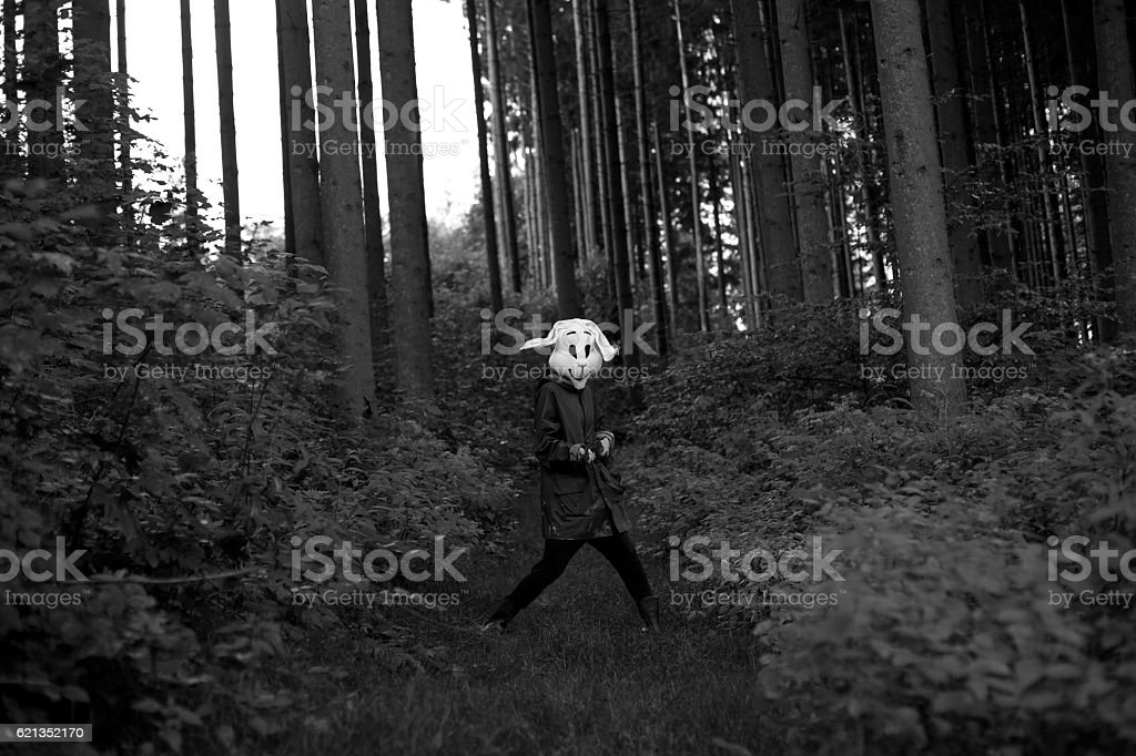 white rabbit hunter stock photo