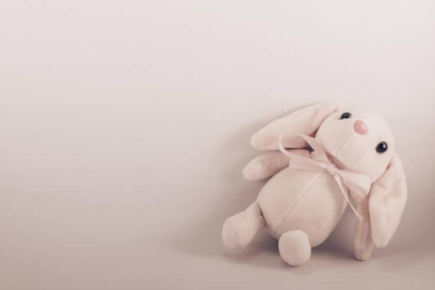 wit konijn - background baby stockfoto's en -beelden