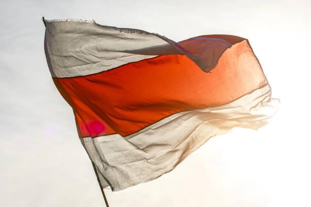 biało-czerwona biała flaga. nowa flaga białorusi - białoruś zdjęcia i obrazy z banku zdjęć