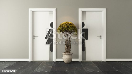 istock white restroom doors for male and female 610956208