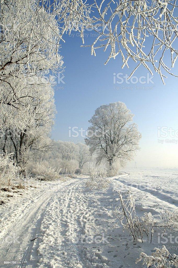 White road royalty-free stock photo