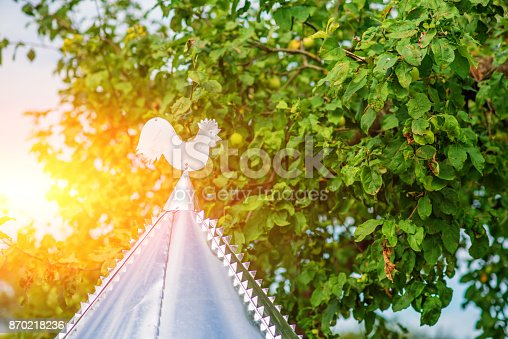 870218154 istock photo White rooster weather vane show the wind direction 870218236