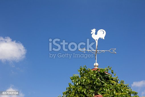 870218154 istock photo White rooster weather vane show the wind 637043104