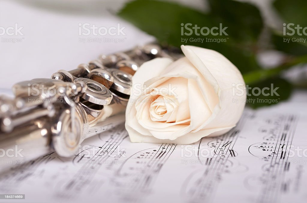 White Rose And Flute On Sheet Music Stock Photo - Download Image Now