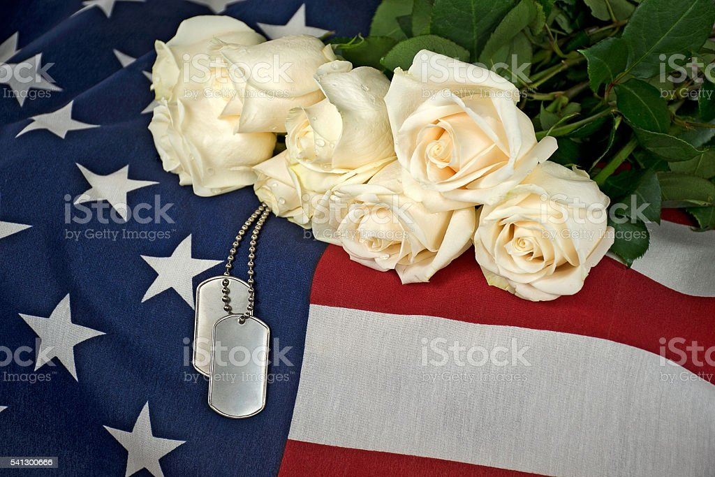 white rose bouquet military dog tags on flag stock photo