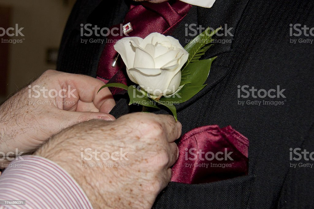white Rose buttonhole put on by the groom's best man royalty-free stock photo