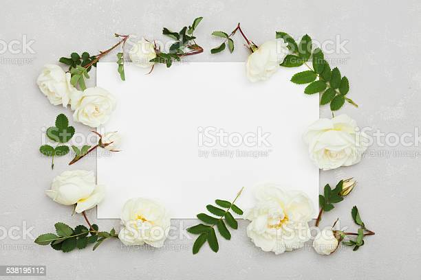 White rose flowers green leaves clean paper sheet flat lay picture id538195112?b=1&k=6&m=538195112&s=612x612&h=qu6bqccy5mzfhgvt 5s81ottdudkgnvz8jbvxl4ucds=