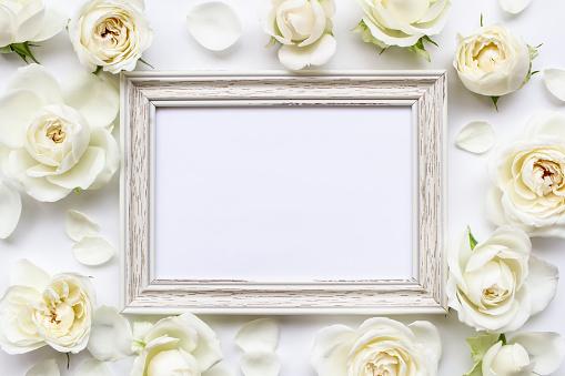 Flower, rose, white, frame, invitation