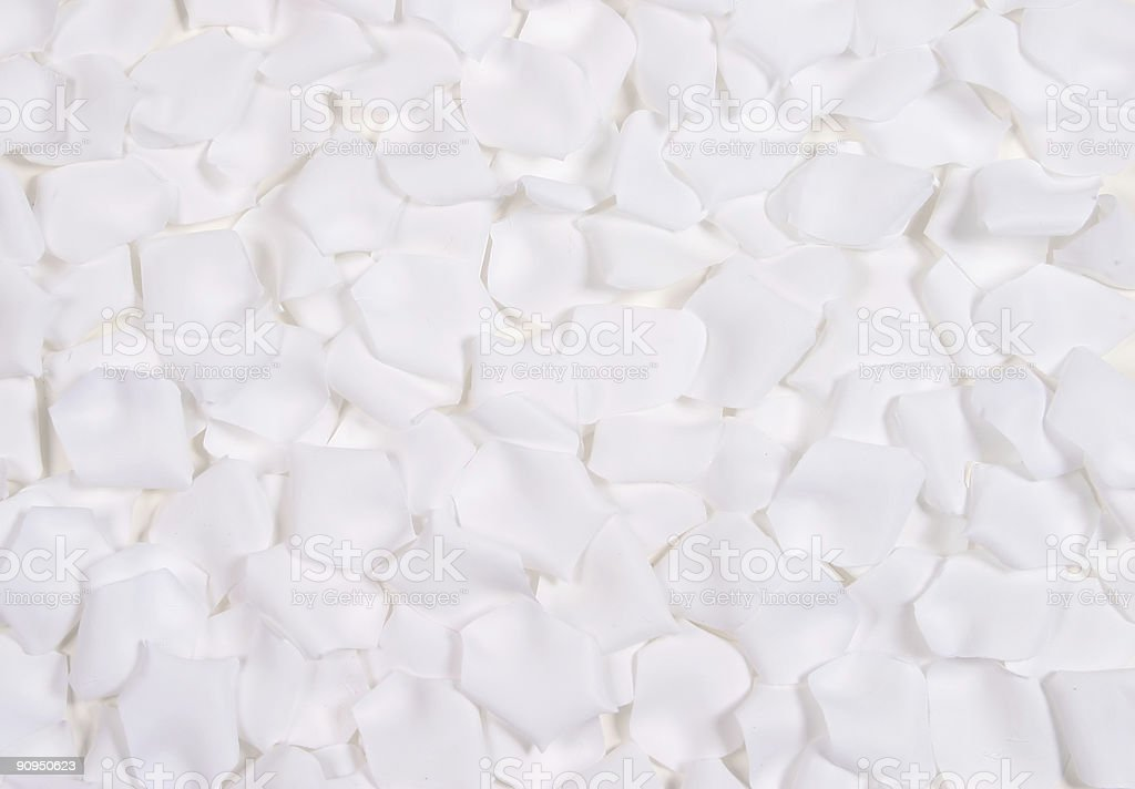 White rose pedals stock photo